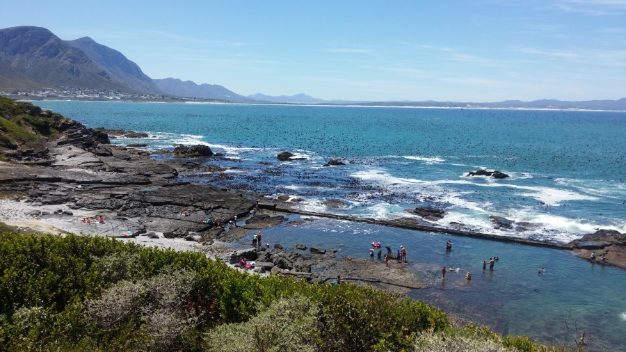 hermanus rock pools
