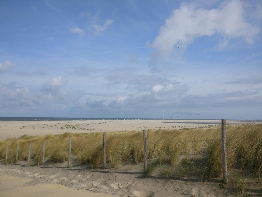 beach hook of hollland